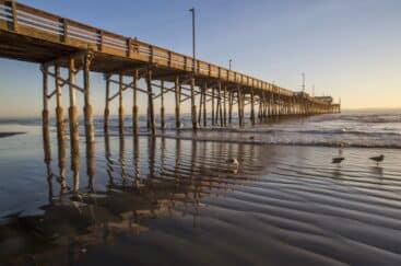 487d5-surftrip_californie2