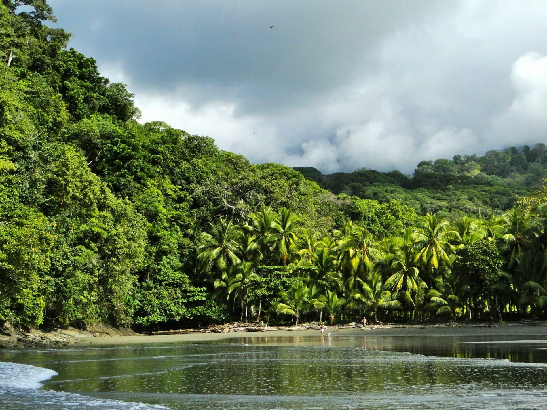 surf camp in costa rica